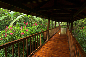 Selva Verde Lodge