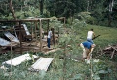 Removal the illegal squatters' shacks, c. 1986.jpg